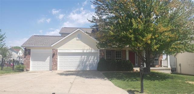 200 Vogel Estates, Arnold, MO 63010 (#19028302) :: PalmerHouse Properties LLC