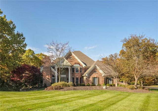 6 Kingspointe Lake Ct, Chesterfield, MO 63005 (#19028665) :: Peter Lu Team