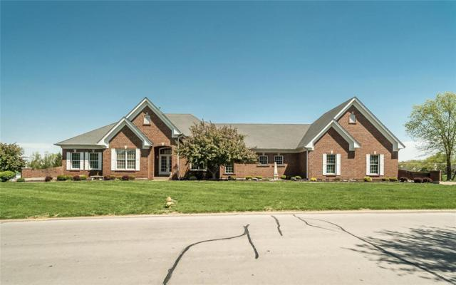 657 Clifden Drive, Weldon Spring, MO 63304 (#19028831) :: RE/MAX Professional Realty