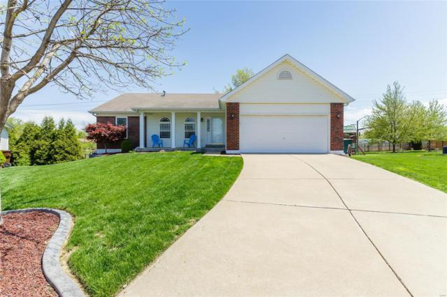 6 Dynasty Court, Saint Peters, MO 63376 (#19029027) :: Clarity Street Realty