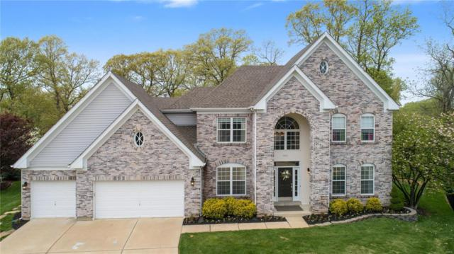803 Shady Castle Court, Ballwin, MO 63021 (#19029337) :: The Becky O'Neill Power Home Selling Team