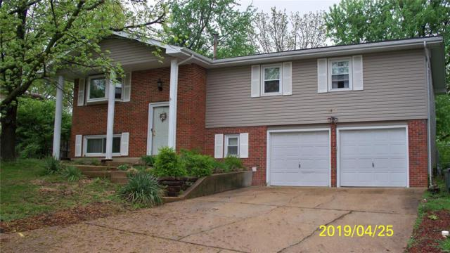 1408 Scenic, Rolla, MO 65401 (#19030622) :: RE/MAX Professional Realty