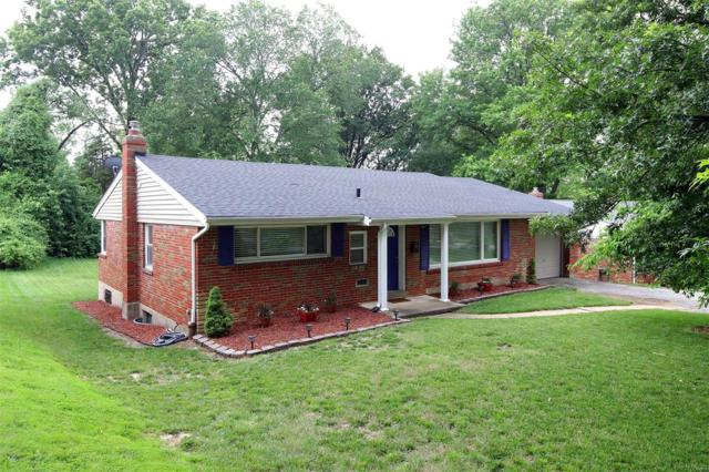 7544 Amherst Avenue, University City, MO 63130 (#19031105) :: RE/MAX Professional Realty