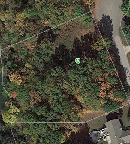 1175 Riverwoods Drive, Desloge, MO 63601 (#19031434) :: Matt Smith Real Estate Group