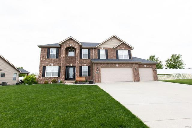 1445 Arley Hill Drive, O'Fallon, IL 62269 (#19031603) :: The Becky O'Neill Power Home Selling Team