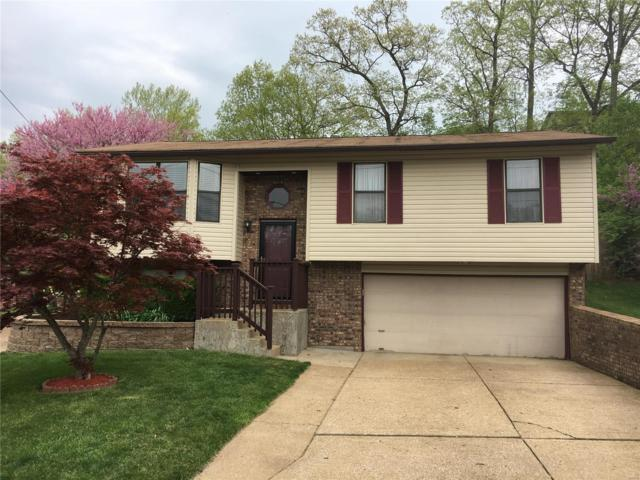 844 Country Glen Drive, Imperial, MO 63052 (#19031623) :: The Becky O'Neill Power Home Selling Team