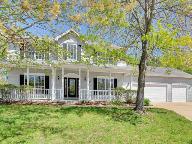 16101 Woodsview Manor Court, Ellisville, MO 63038 (#19031901) :: The Kathy Helbig Group