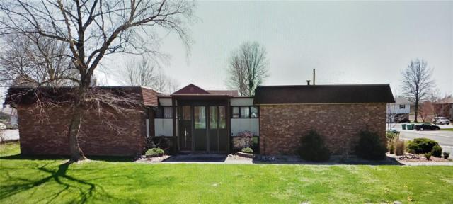 1 Sunset Drive, Freeburg, IL 62243 (#19031983) :: Fusion Realty, LLC