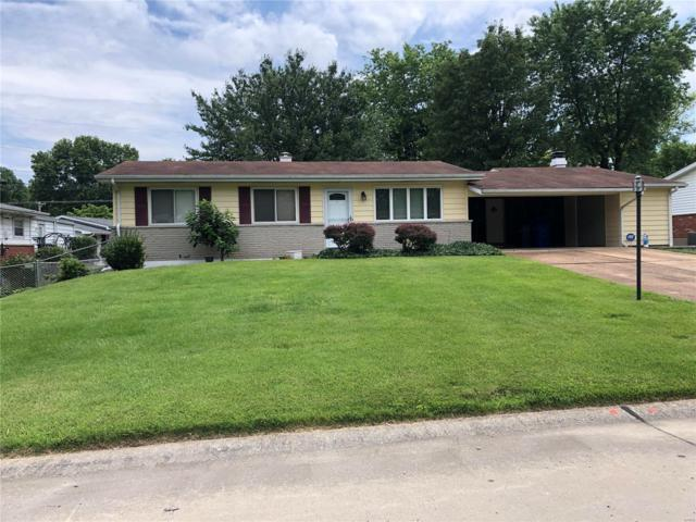 436 Terryville Drive, St Louis, MO 63125 (#19032277) :: Clarity Street Realty