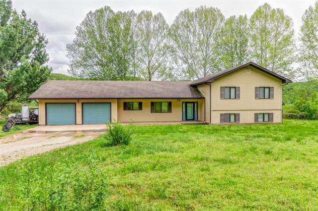 18500 Cliff Road, Dixon, MO 65459 (#19032596) :: Walker Real Estate Team