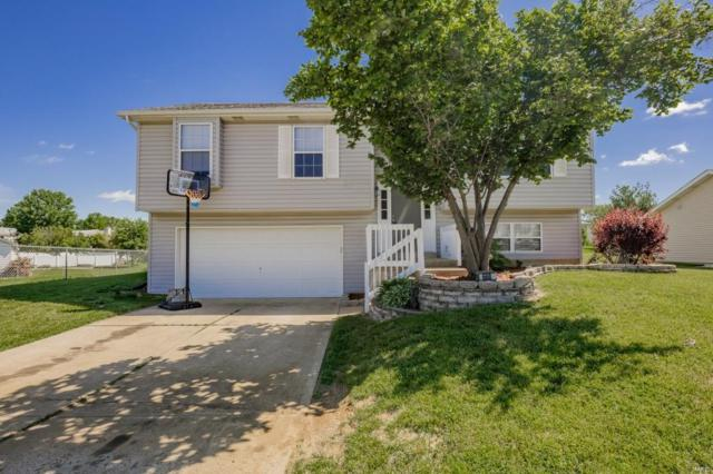 668 Loch Carron Drive, Wentzville, MO 63385 (#19032608) :: The Becky O'Neill Power Home Selling Team