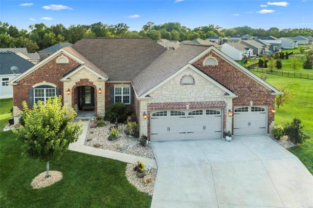 14 Swope Park Court, Wentzville, MO 63348 (#19033175) :: The Becky O'Neill Power Home Selling Team