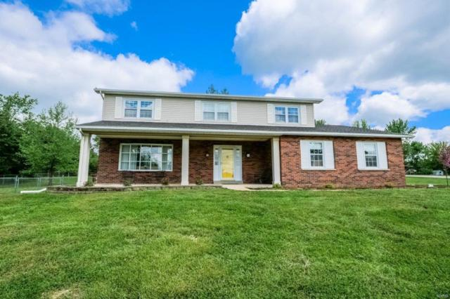1101 Vicksburg, Festus, MO 63028 (#19033241) :: The Becky O'Neill Power Home Selling Team