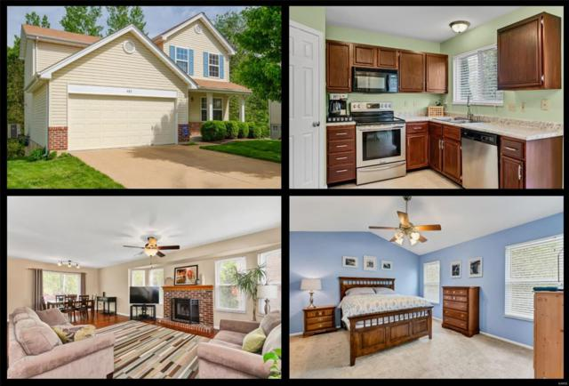 483 Valparaiso Court, Valley Park, MO 63088 (#19033474) :: The Becky O'Neill Power Home Selling Team