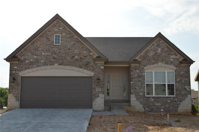 701 Ridgepointe Court, Lake St Louis, MO 63367 (#19033848) :: The Becky O'Neill Power Home Selling Team