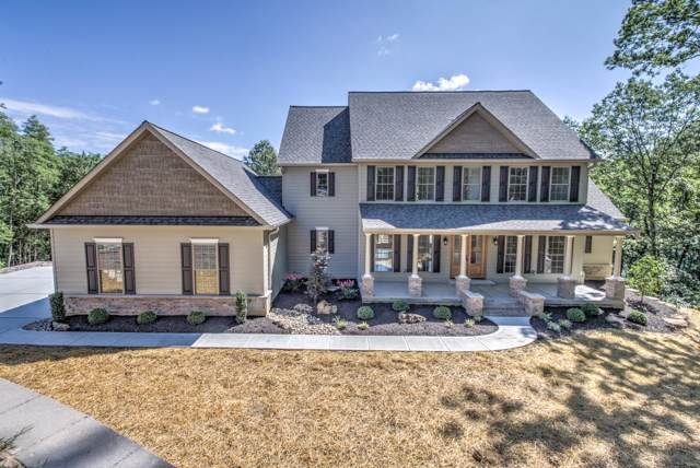 3914 Hollow View Court, Wildwood, MO 63069 (#19033969) :: Clarity Street Realty