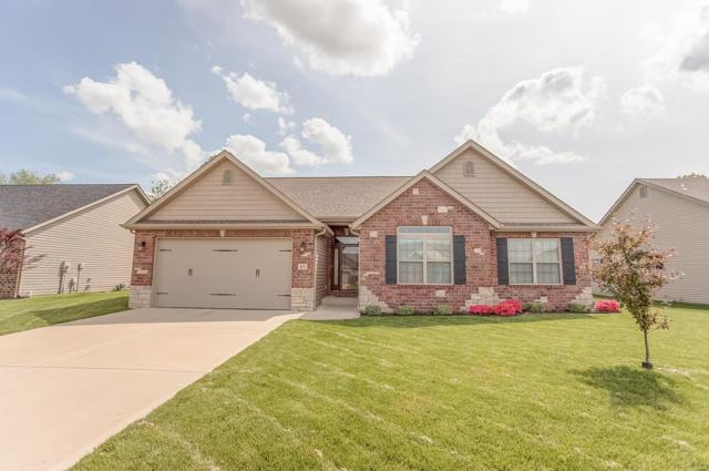 491 Wernings Drive, Columbia, IL 62236 (#19034030) :: The Becky O'Neill Power Home Selling Team