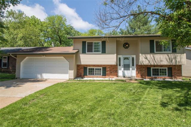 12123 Castilon Avenue, St Louis, MO 63138 (#19034679) :: The Becky O'Neill Power Home Selling Team