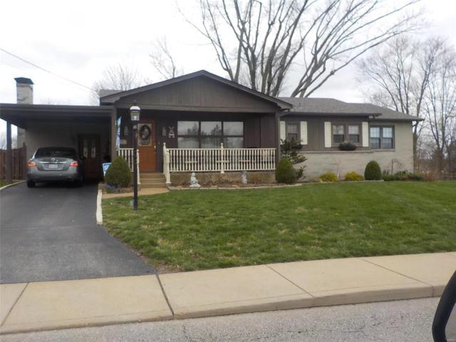 517 Vreeland Road, Hillsboro, MO 63050 (#19034723) :: Clarity Street Realty