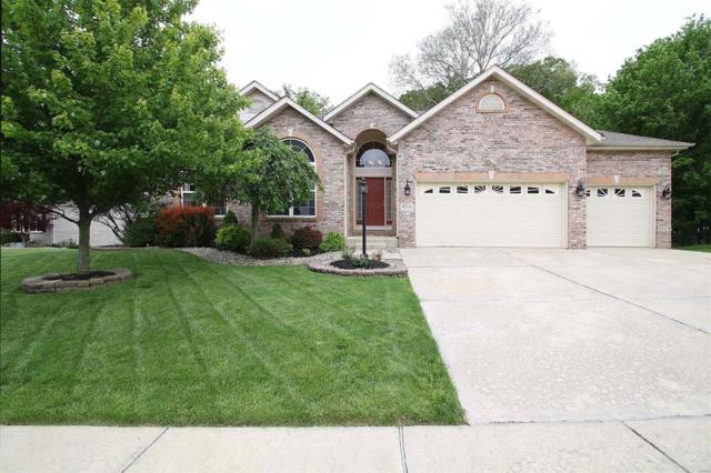 45 Wolfe Creek Court, Glen Carbon, IL 62034 (#19034785) :: Hartmann Realtors Inc.