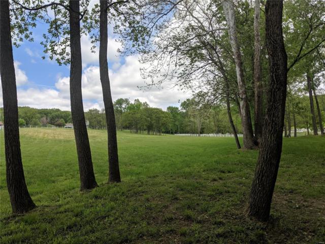 18348 Pinhook Hollow Drive, Wildwood, MO 63069 (#19034900) :: Peter Lu Team