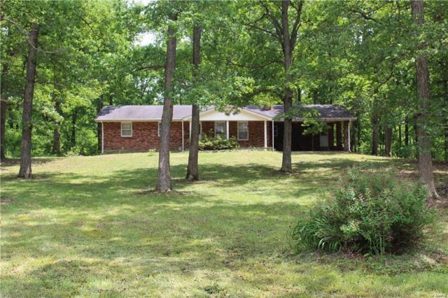 766 Buck Mountain, Doe Run, MO 63637 (#19034942) :: The Becky O'Neill Power Home Selling Team