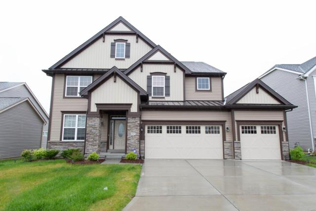 903 Finberry Grove Court, Cottleville, MO 63304 (#19035112) :: The Becky O'Neill Power Home Selling Team
