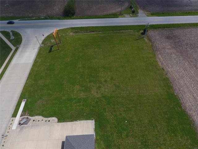 91 Weatherholt Drive, New Baden, IL 62265 (#19035220) :: Clarity Street Realty