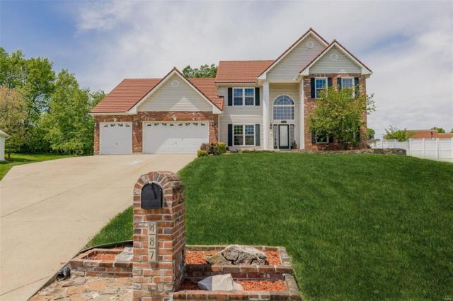 487 Pearl Ridge Court, Saint Charles, MO 63303 (#19035888) :: The Becky O'Neill Power Home Selling Team