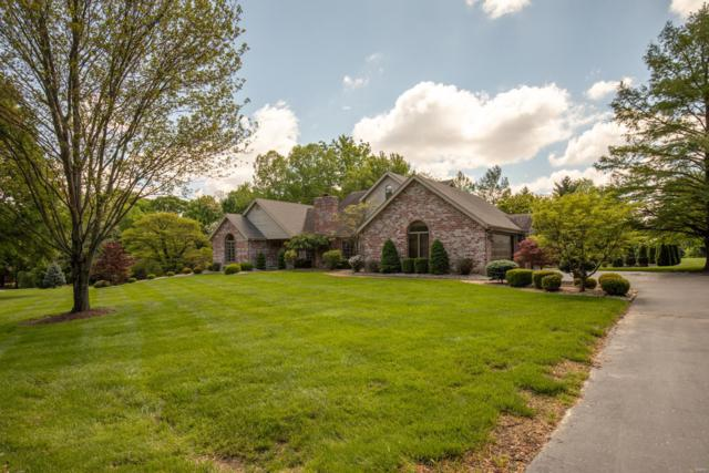 21 Lake Forest Drive, Saint Charles, MO 63301 (#19035990) :: Peter Lu Team