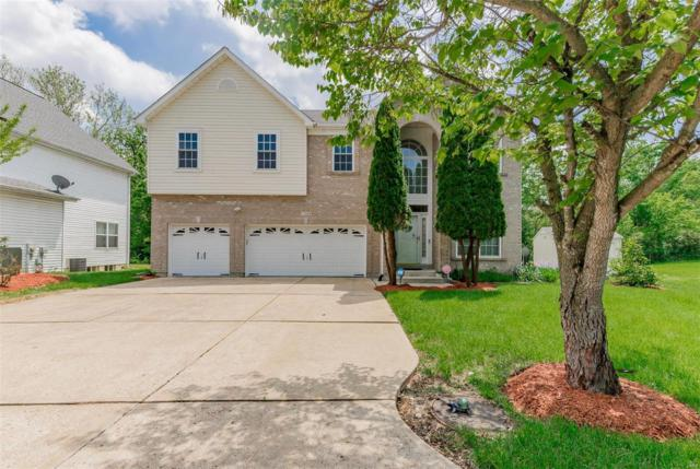 11964 Ameling Road, Maryland Heights, MO 63043 (#19036176) :: The Kathy Helbig Group