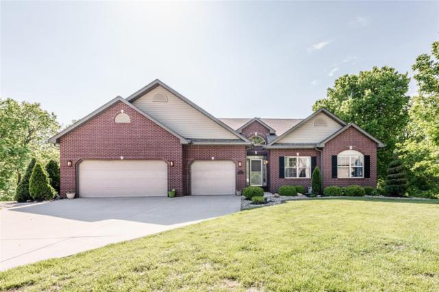 1136 Naturescape Court, O'Fallon, IL 62269 (#19036257) :: The Becky O'Neill Power Home Selling Team
