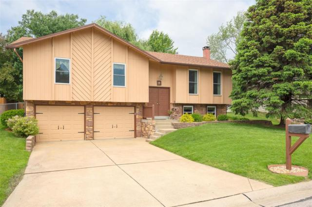 18 Crescent Woods Drive, Saint Peters, MO 63376 (#19036420) :: The Becky O'Neill Power Home Selling Team