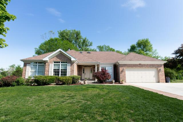 2708 Pro Tour Drive, Belleville, IL 62220 (#19036559) :: The Becky O'Neill Power Home Selling Team