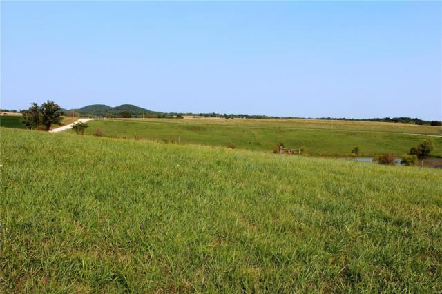 0 24.9 Ac M/L Pike 225, Eolia, MO 63344 (#19036582) :: The Becky O'Neill Power Home Selling Team