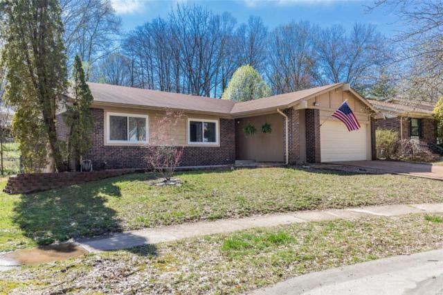 5971 Shortleaf, St Louis, MO 63128 (#19036588) :: The Becky O'Neill Power Home Selling Team