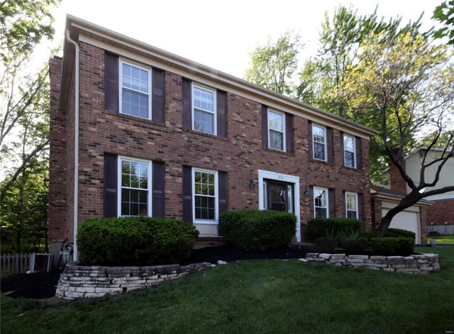 14250 Dinsmoor Dr., Chesterfield, MO 63017 (#19036689) :: Kelly Shaw Team