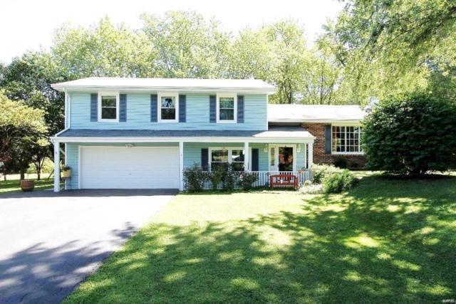 4 Green Oak, O'Fallon, MO 63366 (#19036762) :: The Becky O'Neill Power Home Selling Team