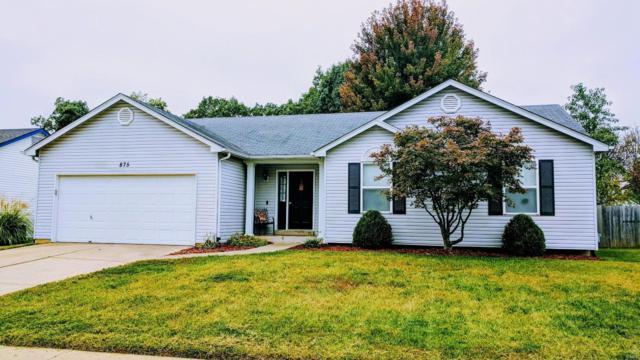 875 Molloy Drive, O'Fallon, MO 63366 (#19036862) :: The Becky O'Neill Power Home Selling Team