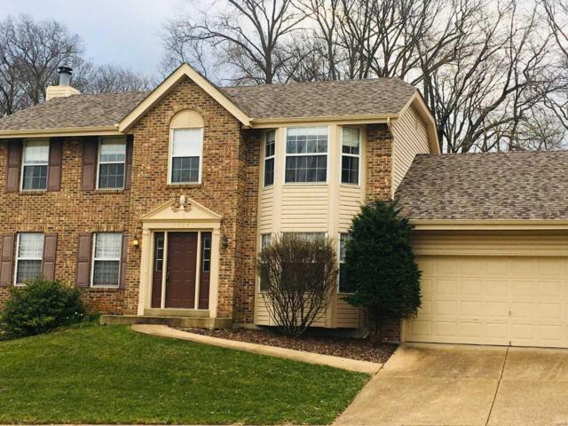 3029 Olde Post Road, St Louis, MO 63129 (#19036936) :: Clarity Street Realty