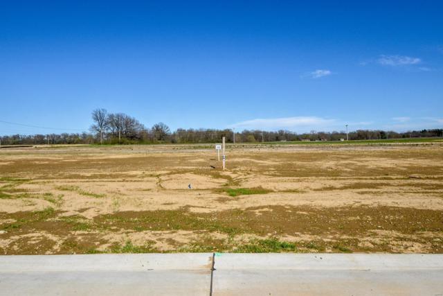 432 Foxtail Drive, Freeburg, IL 62243 (#19037167) :: Walker Real Estate Team