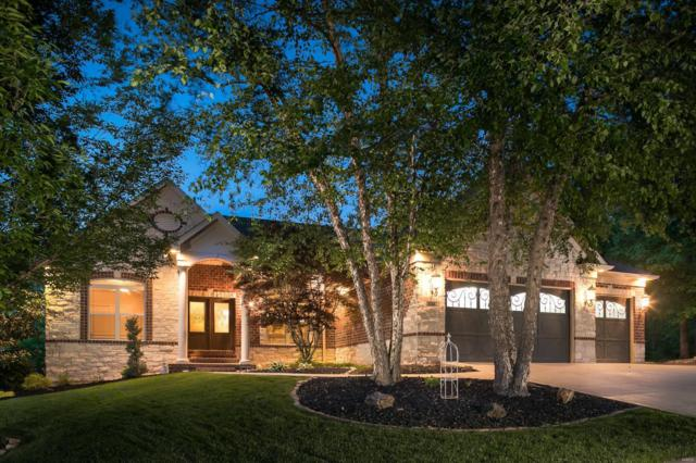546 Elm Creek Drive, Wentzville, MO 63385 (#19037384) :: The Becky O'Neill Power Home Selling Team