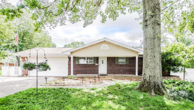 24 Pines Drive, Saint Peters, MO 63376 (#19037407) :: The Kathy Helbig Group