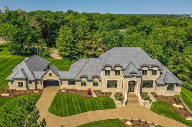 601 Greenwich Green Lane, Town and Country, MO 63017 (#19037627) :: Kelly Hager Group | TdD Premier Real Estate