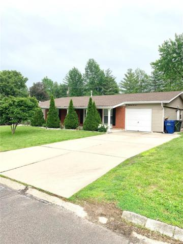 3346 Cordes, St Louis, MO 63125 (#19037641) :: The Becky O'Neill Power Home Selling Team