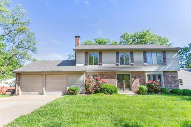 15215 Golden Rain, Chesterfield, MO 63017 (#19037695) :: The Kathy Helbig Group