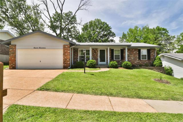 1117 Grenadier Lane, Manchester, MO 63021 (#19037743) :: The Kathy Helbig Group