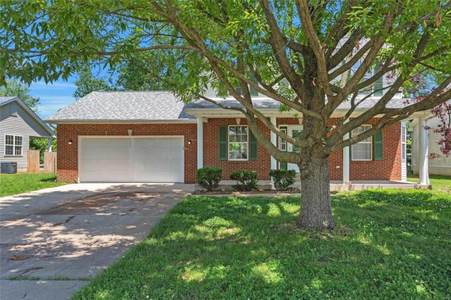 14 Cat Tail Court, Belleville, IL 62223 (#19037770) :: St. Louis Finest Homes Realty Group