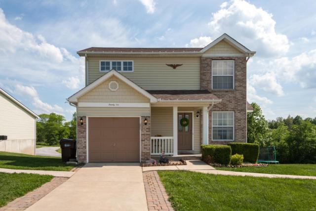 26 Majestic Lakes Court, Moscow Mills, MO 63362 (#19037863) :: The Becky O'Neill Power Home Selling Team