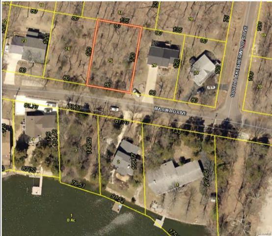 418 Marina Drive, Marthasville, MO 63357 (#19037989) :: Kelly Hager Group   TdD Premier Real Estate